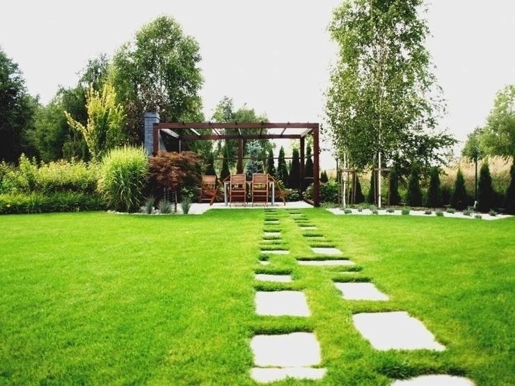 Patio2: styl , w kategorii Ogród zaprojektowany przez Green Decor,Nowoczesny
