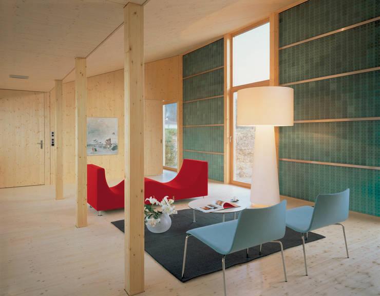 Solarhaus III in Ebnat-Kappel CH, 2000:  Wohnzimmer von Dietrich Schwarz Architekten AG