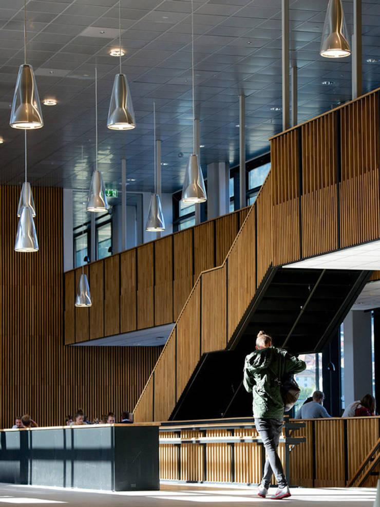 Lamas de madera y carpintería técnica en la Escuela Superior de Bergen: Pasillos y vestíbulos de estilo  de SPIGOGROUP