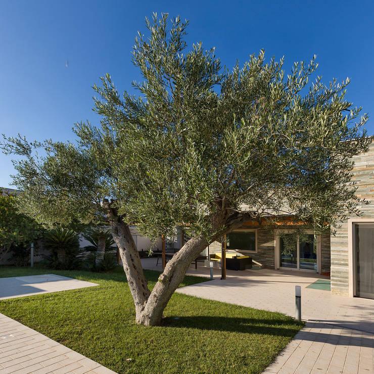 VILLA D. TORRE A MARE BARI: Giardino in stile in stile Moderno di Studio Bugna