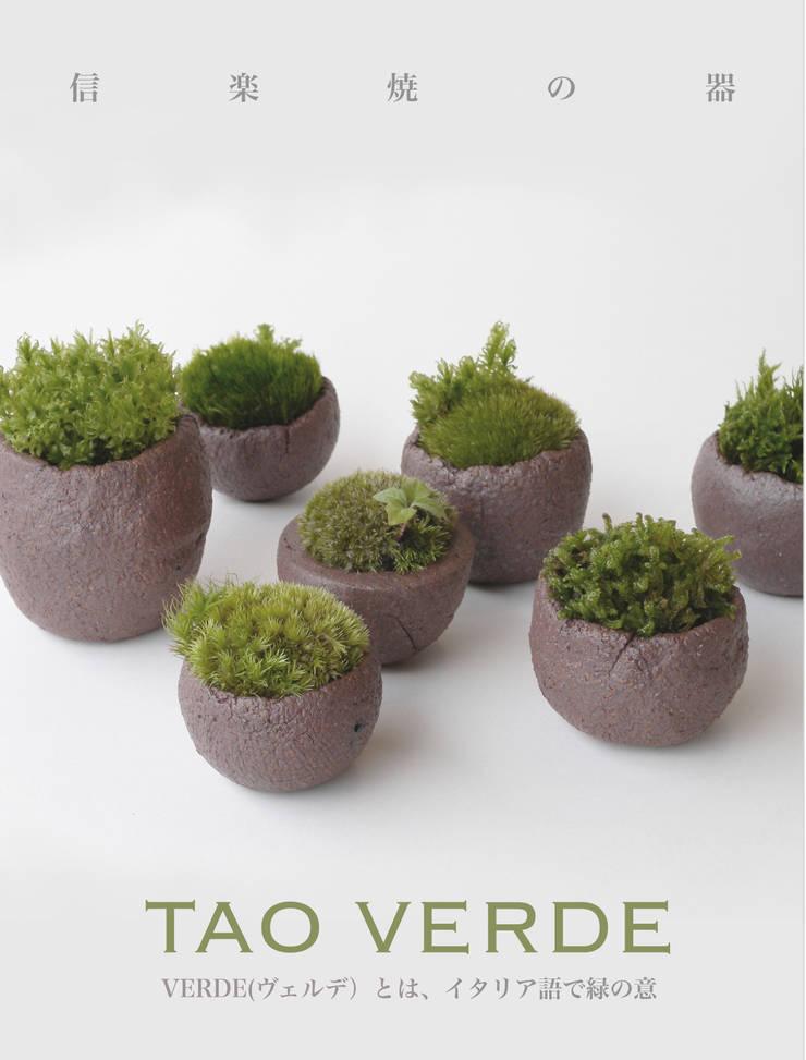 苔の器: 篠田 望デザイン一級建築士事務所が手掛けた庭です。