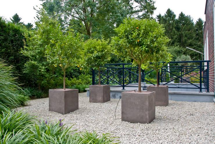 Jardines de estilo  por Montecchio S.r.l.