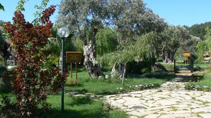 sihirlipeyzaj – sihirli peyzaj:  tarz Bahçe, Akdeniz