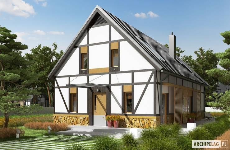 Projekt EX 15 : styl , w kategorii Domy zaprojektowany przez Pracownia Projektowa ARCHIPELAG