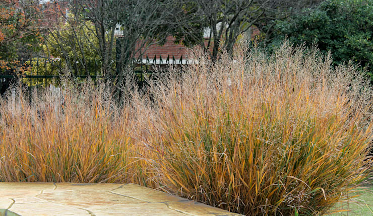 Jardines de estilo moderno de MARIELA DURA ARQUITECTURA PAISAJISTA Moderno