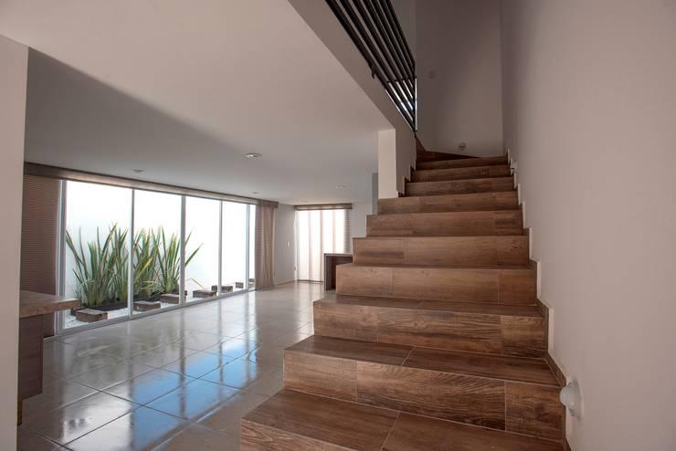 Pasillos, vestíbulos y escaleras  de estilo  por JF ARQUITECTOS