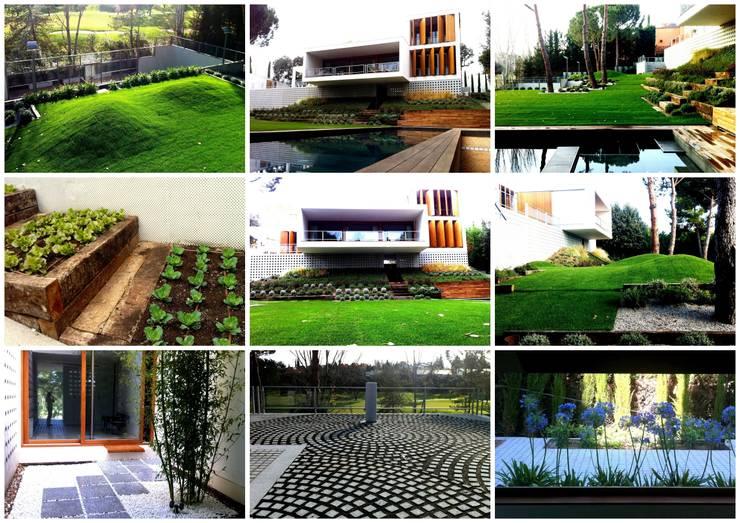 JARDIN EN LA MORALEJA, EL GOLF: Jardines de estilo  de Liquidambar.es