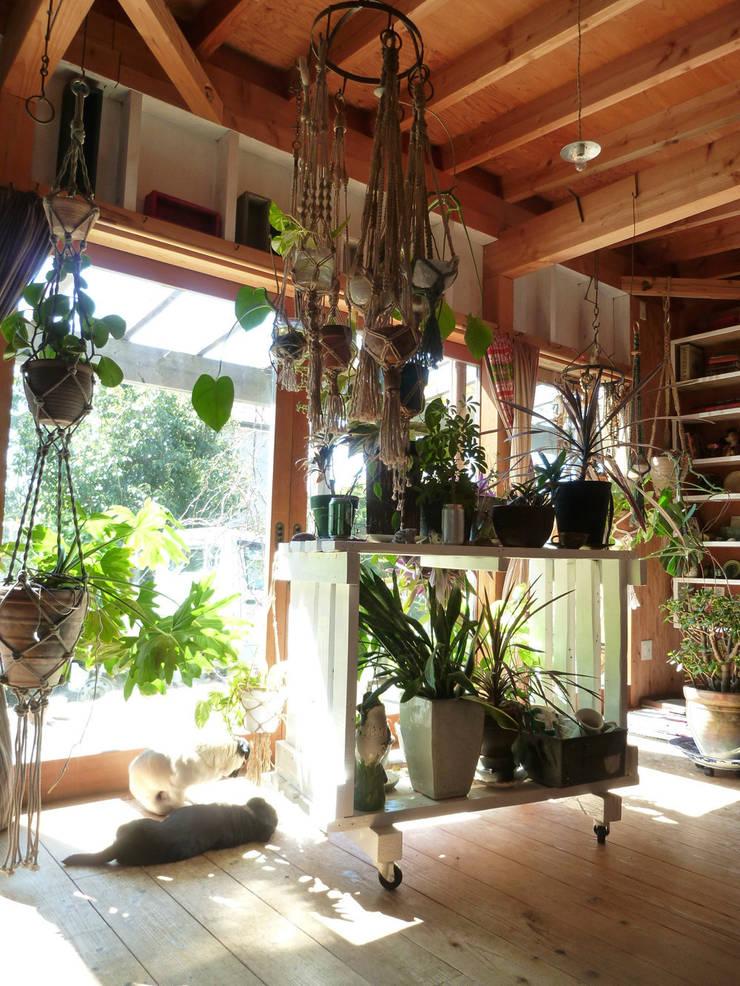 茂原の家: 合同会社加藤哲也建築設計事務所が手掛けたサンルームです。