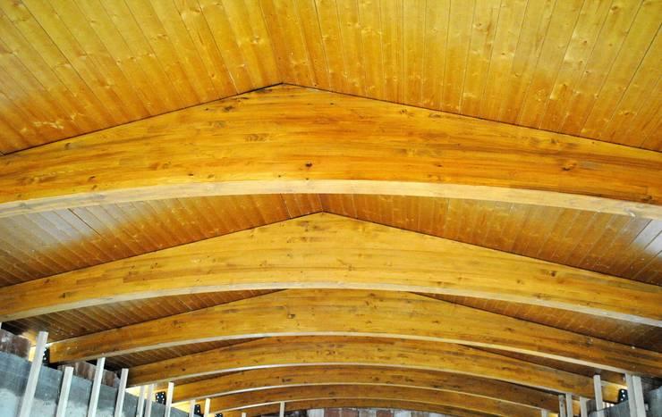 Estructura de madera de viga de intradós curvo: Casas de estilo  de CUTECMA Estructuras de madera