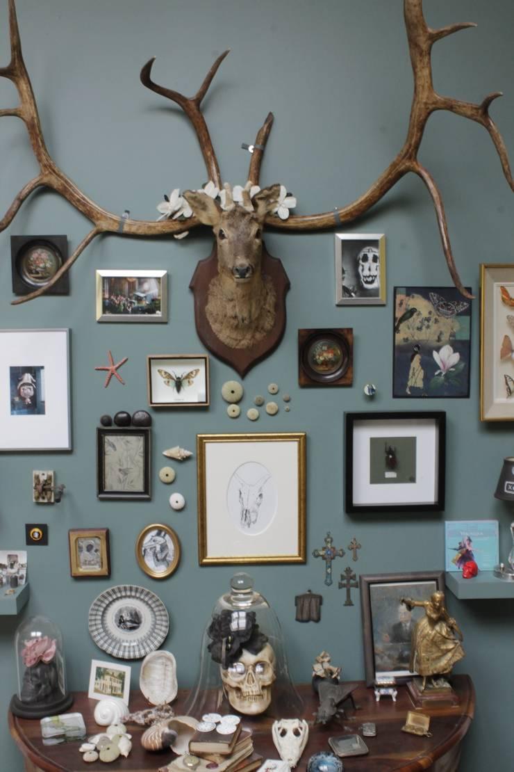 """""""Curieux Cabinet !"""": Salon de style  par Marie Dumora"""