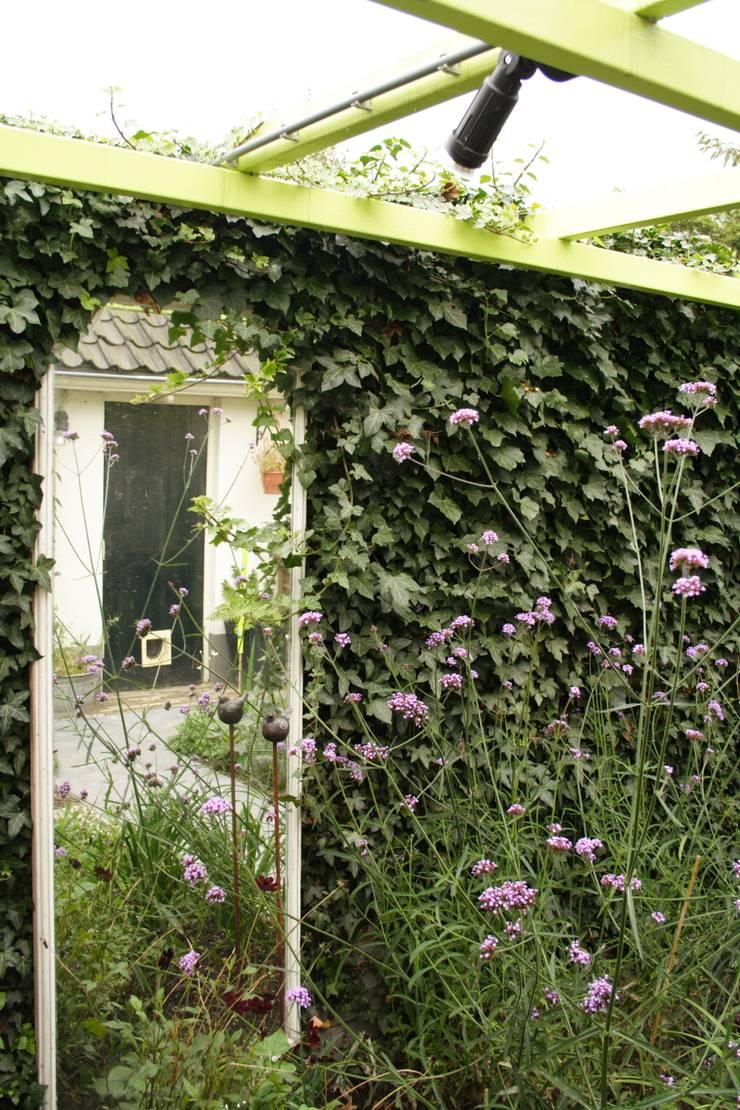 Mini patio tuin Wijk bij Duurstede:  Tuin door Mocking Hoveniers, Klassiek