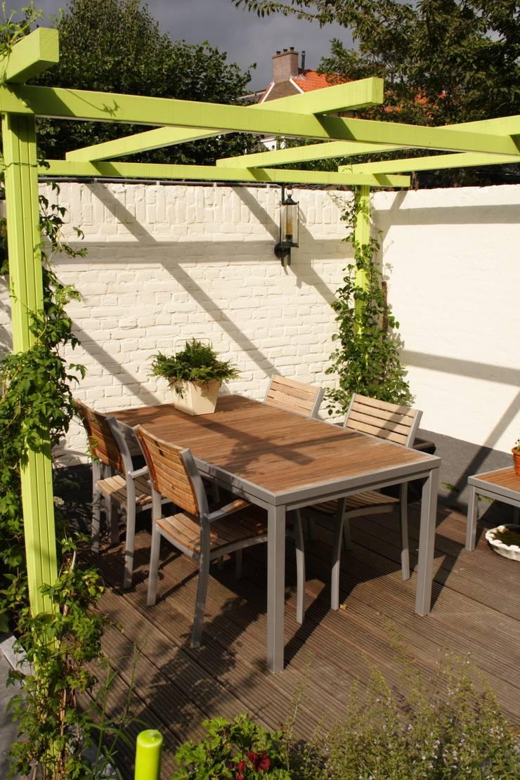 Mini patio tuin Wijk bij Duurstede:  Tuin door Mocking Hoveniers, Modern