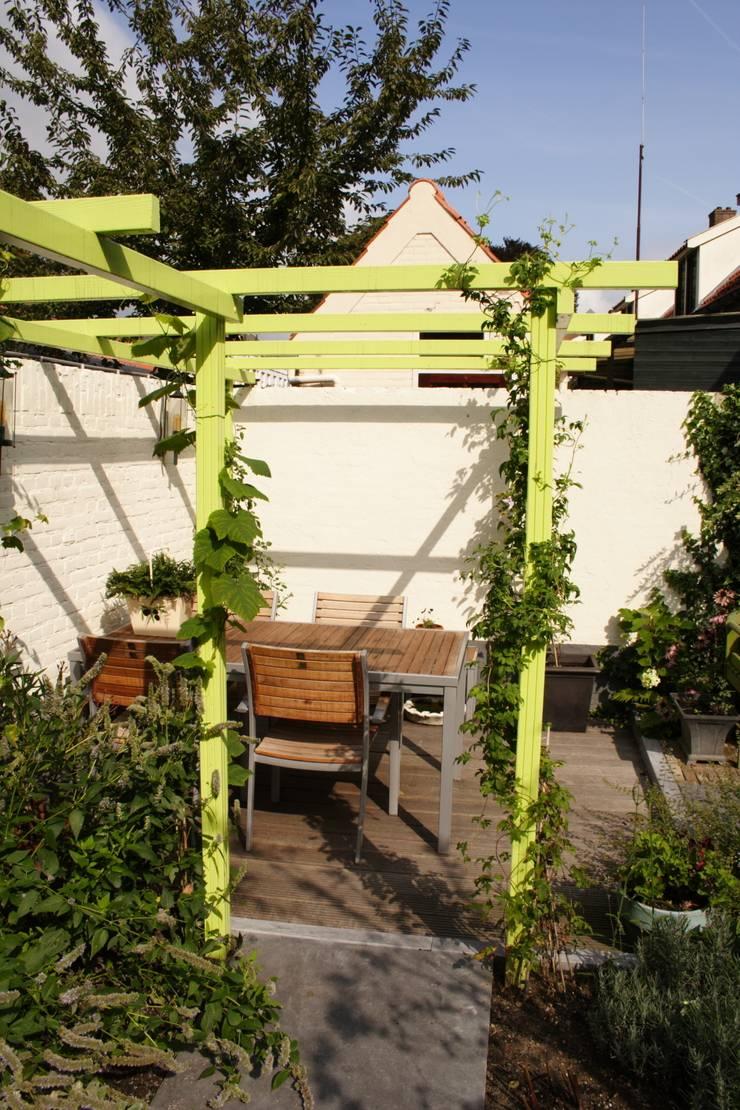Mini patio tuin:  Tuin door Mocking Hoveniers, Modern