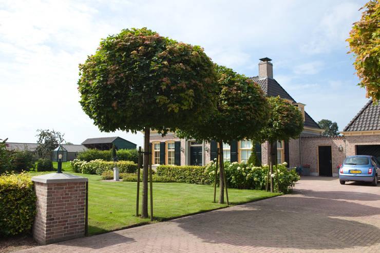 Jardines de estilo  por Mocking Hoveniers
