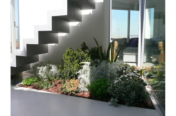 Angolo verde con piante officinali : Balcone, Veranda & Terrazzo in stile  di 8&A Architetti