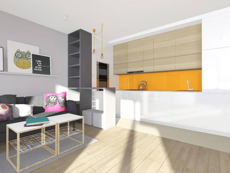 Projekt wnętrza mieszkania 30 m2 w Krakowie: styl , w kategorii Kuchnia zaprojektowany przez Lidia Sarad