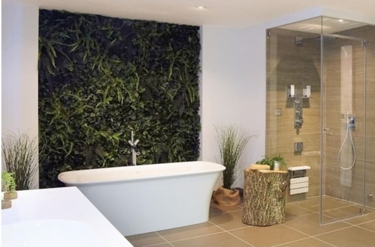 rustic Bathroom by Evergreen Trees & Shrubs