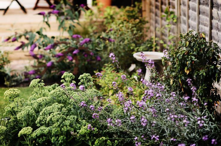 Rosliny: styl , w kategorii  zaprojektowany przez Green Point Garden Design