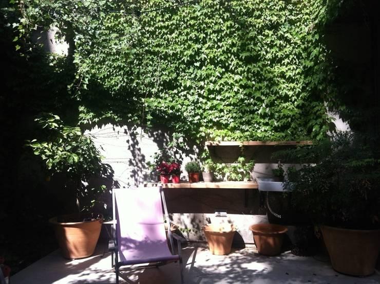 PATIOS Y TERRAZAS: Jardines de estilo  de Asilvestrada