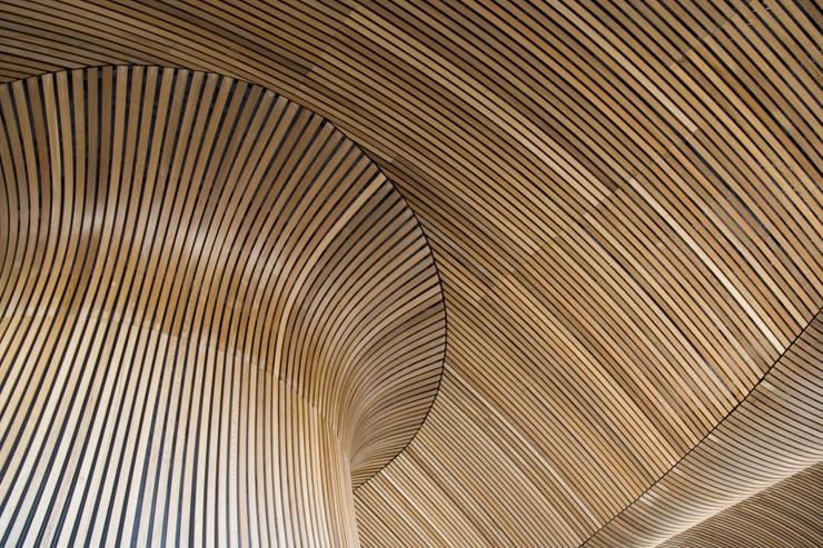Deckon Asma Tavan Sistemleri – DeckoWood:  tarz Duvarlar