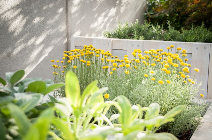Balconies, verandas & terraces  by exTerra | Consulenze ambientali e Design nel verde