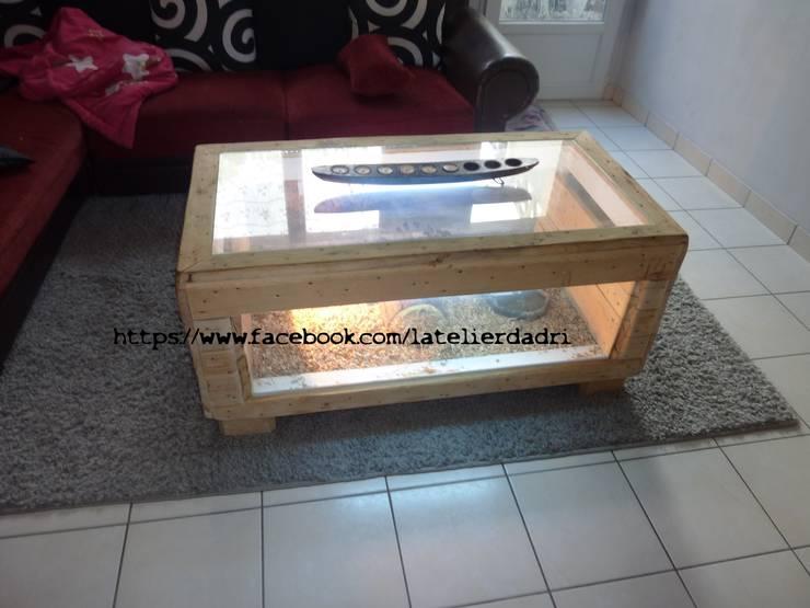 l 39 atelier d 39 adri terrarium bois de palettes par l. Black Bedroom Furniture Sets. Home Design Ideas