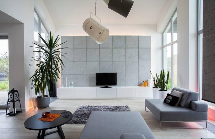 DOM JEDNORODZINNY: styl , w kategorii Salon zaprojektowany przez Kunkiewicz Architekci ,Nowoczesny