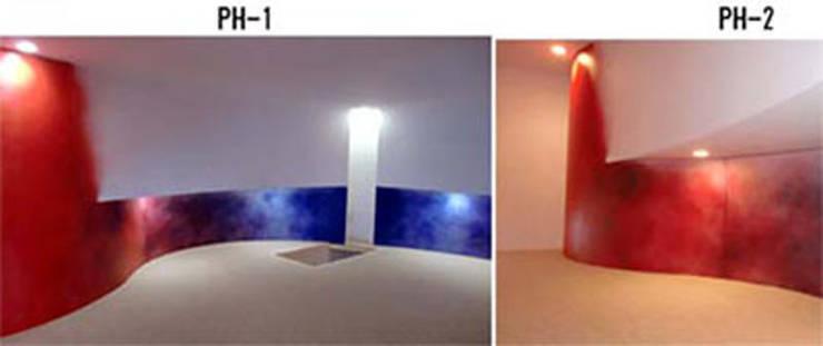 Aurora private room: 南俊治建築研究所が手掛けたです。