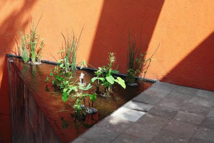 Espejo de agua en acceso: Jardines de estilo moderno por Quinto Distrito Arquitectura