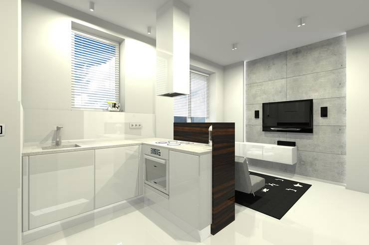 Mieszkanie prywatne – Warszawa Powiśle.: styl , w kategorii Kuchnia zaprojektowany przez PR Architects Sp z o. o. Pala&Rodek