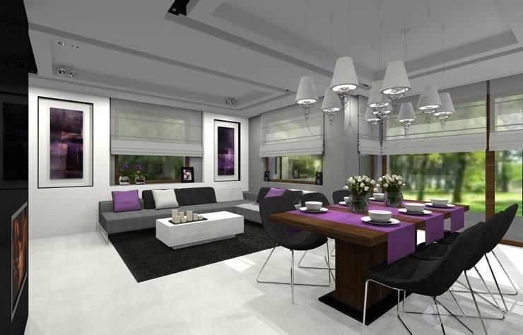 Dom jednorodzinny - Sławków.: styl , w kategorii Salon zaprojektowany przez PR Architects Sp z o. o. Pala&Rodek