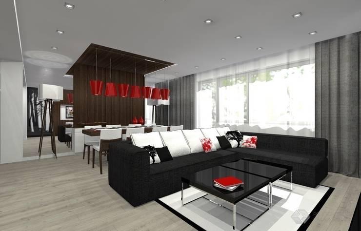 Dom jednorodzinny - Dąbrowa Górnicza.: styl , w kategorii Salon zaprojektowany przez PR Architects Sp z o. o. Pala&Rodek