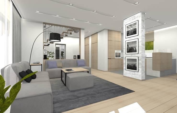 Dom jednorodzinny - Sosnowiec.: styl , w kategorii Salon zaprojektowany przez PR Architects Sp z o. o. Pala&Rodek
