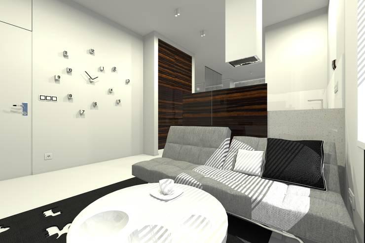 Mieszkanie prywatne – Warszawa Powiśle.: styl , w kategorii Salon zaprojektowany przez PR Architects Sp z o. o. Pala&Rodek