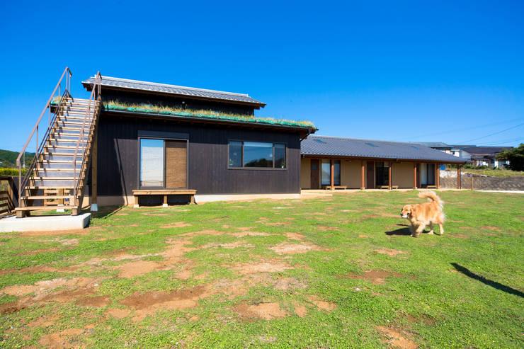ドッグランと外観: 虎設計工房が手掛けた家です。