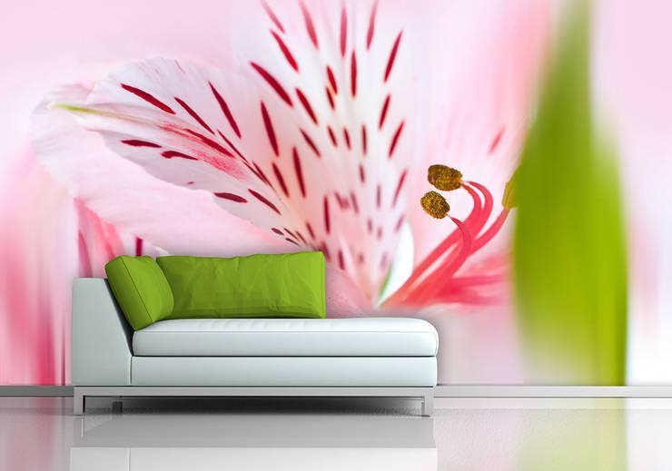 ARTMODEL – Çiçekler temalı duvar kağıtları (DVC-08): kırsal tarz tarz Duvar & Zemin