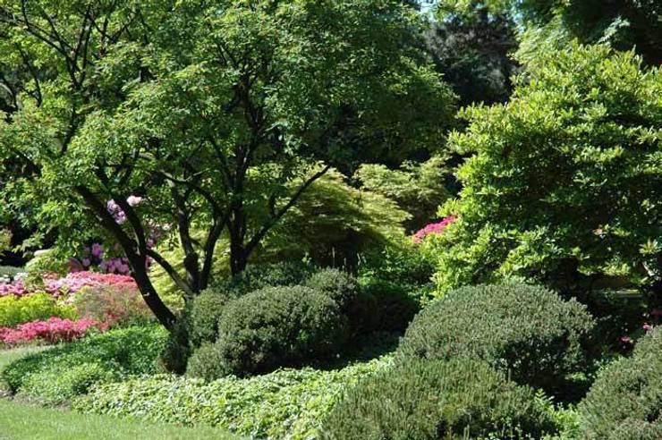 Сад:  в . Автор – Верум Лэнд
