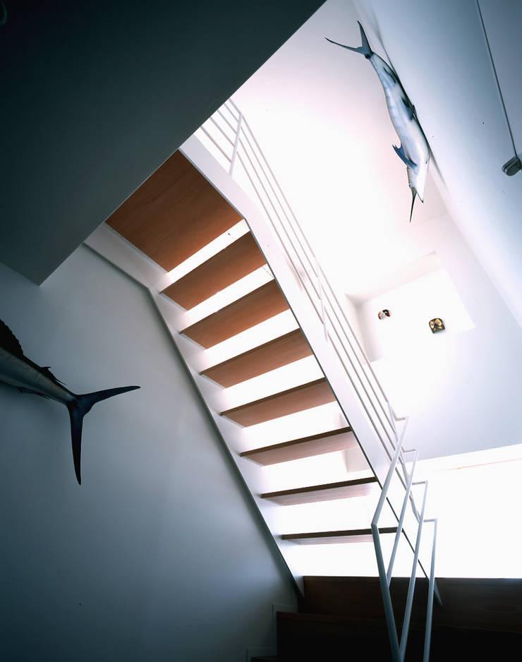階段: 久保田章敬建築研究所が手掛けた玄関&廊下&階段です。