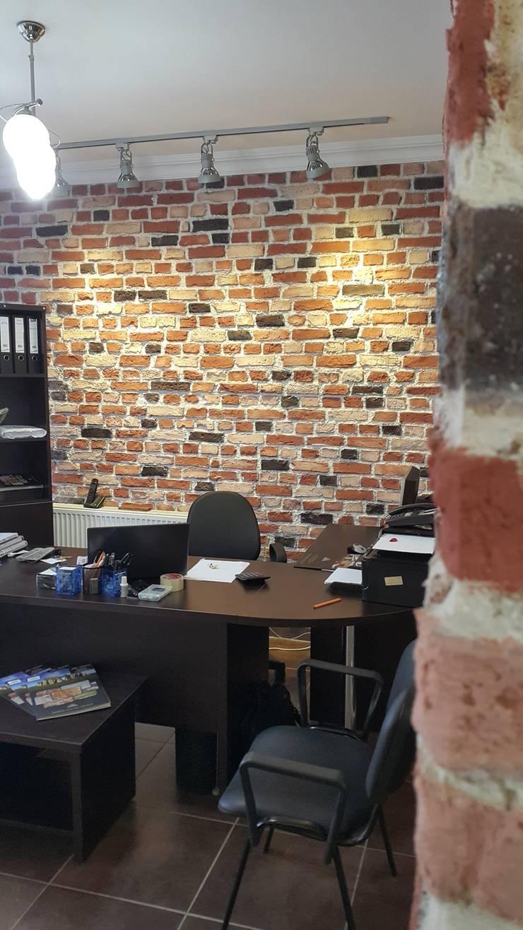 anatolia stone dekoratif taş ve panel sistemeri – anatolia stone:  tarz Evler