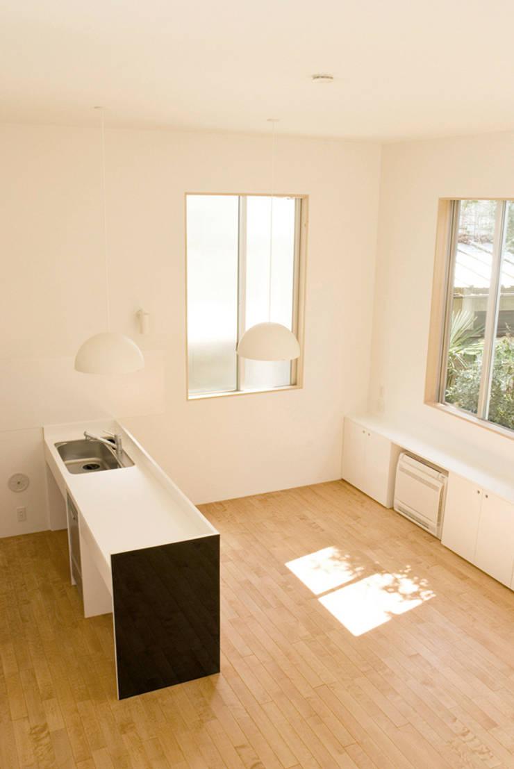 早稲田の家 House in waseda: 平野崇建築設計事務所 TAKASHI HIRANO ARCHITECTSが手掛けたキッチンです。