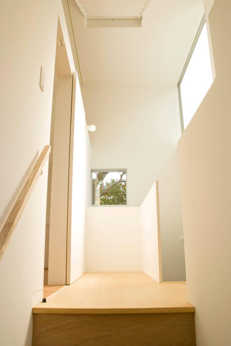 早稲田の家 House in waseda: 平野崇建築設計事務所 TAKASHI HIRANO ARCHITECTSが手掛けた廊下 & 玄関です。