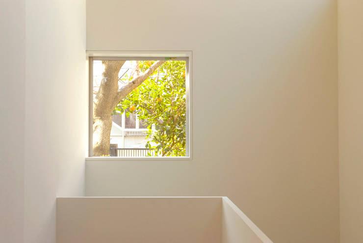 密集した住宅地のなかの別世界 早稲田の家 House in waseda: 平野崇建築設計事務所 TAKASHI HIRANO ARCHITECTSが手掛けた廊下 & 玄関です。,モダン