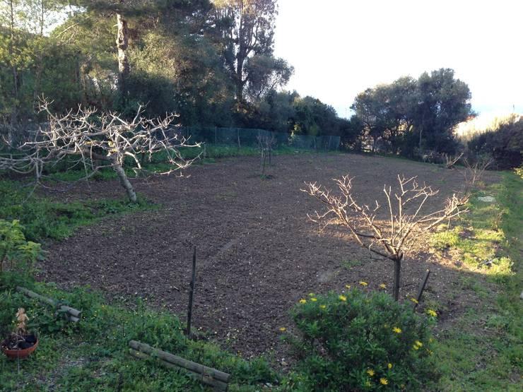 jardin 2ème villa:  de style  par In&Out Garden
