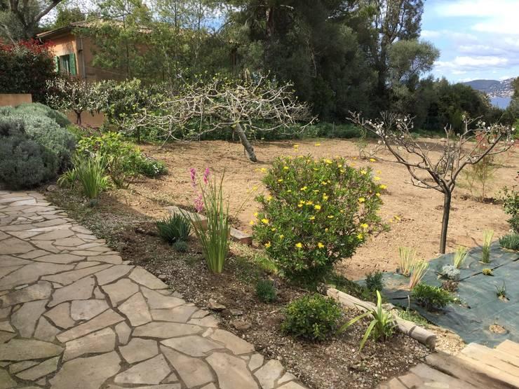 Création d'un nouveau passage et végétalisation des abords: Jardin de style  par In&Out Garden