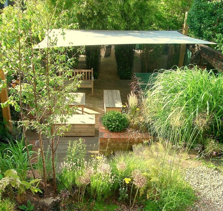 modern Garden by Karena Batstone Design