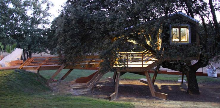 Casa en el árbol enraizada.: Casas de estilo  de Urbanarbolismo
