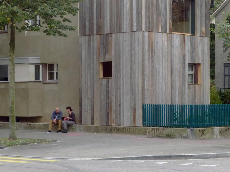 House with a Tree:  Häuser von Sauter von Moos