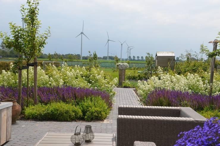 Lounge hoek:  Gezondheidscentra door Tuin van Heden, Modern