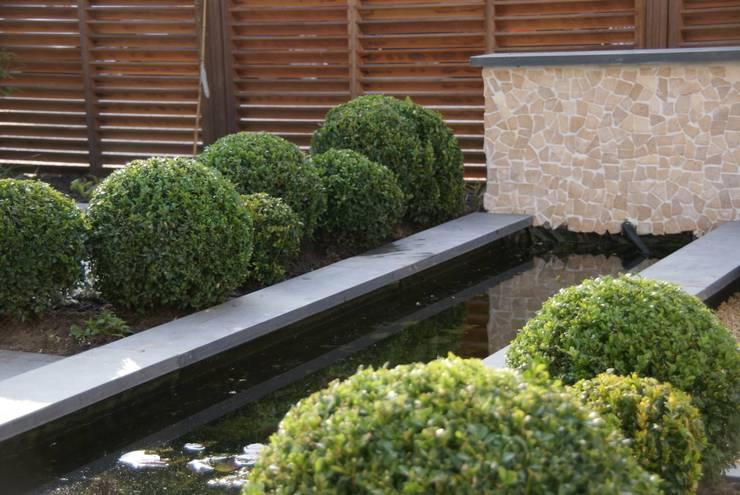 Vijver met buxusbollen:  Tuin door Ontwerpstudio Angela's Tuinen