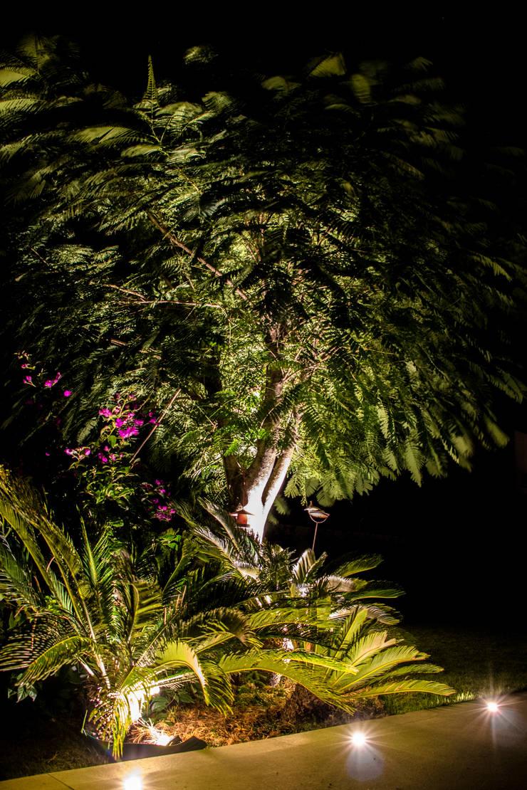 Conceitual: Jardins  por Loro Arquitetura e Paisagismo,